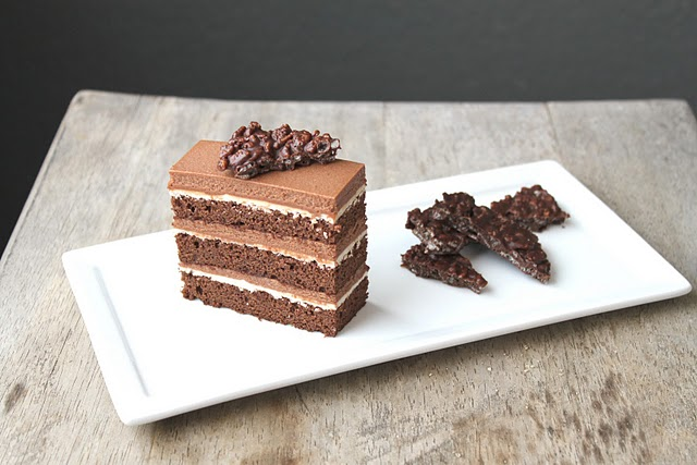 Chocolate Hazelnut Cake with Praline Chocolate Crunch | KeepRecipes ...