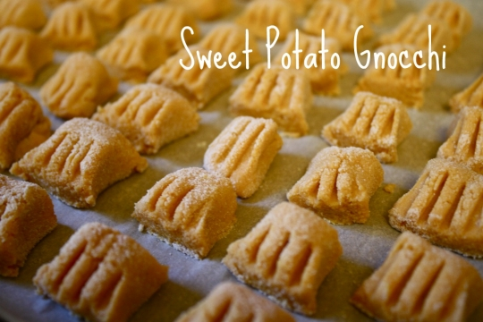 Protein Packed Sweet Potato Gnocchi (Gluten-free and dairy-free ...