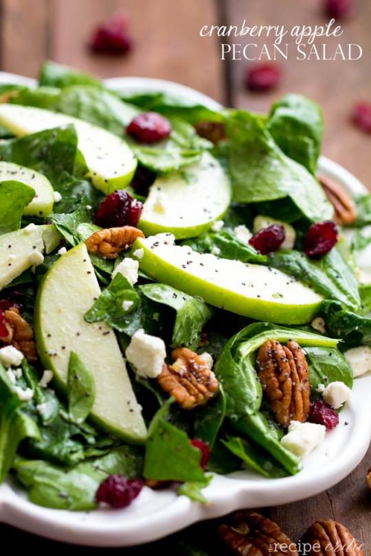 Cranberry Apple Pecan Salad with Creamy Poppyseed Dressing ...