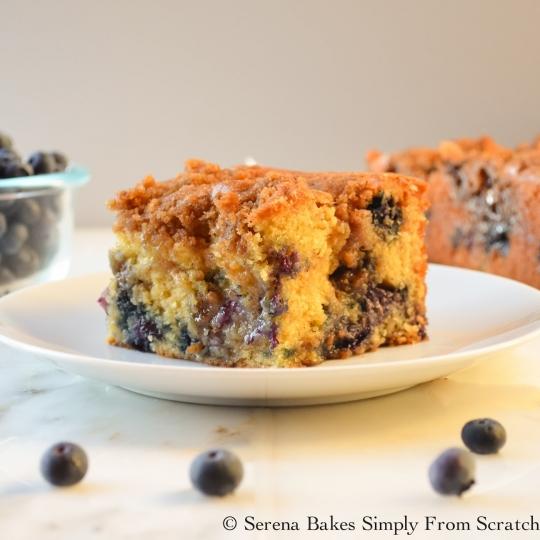 Blueberry Cinnamon Swirl Crumb Coffeecake | KeepRecipes ...