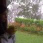 swatisani's picture