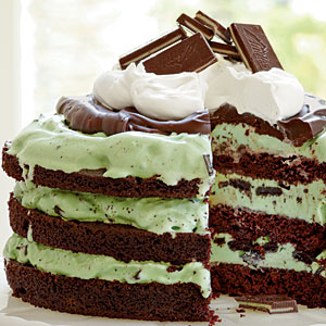 Chocolate chip mint ice cream cake recipe
