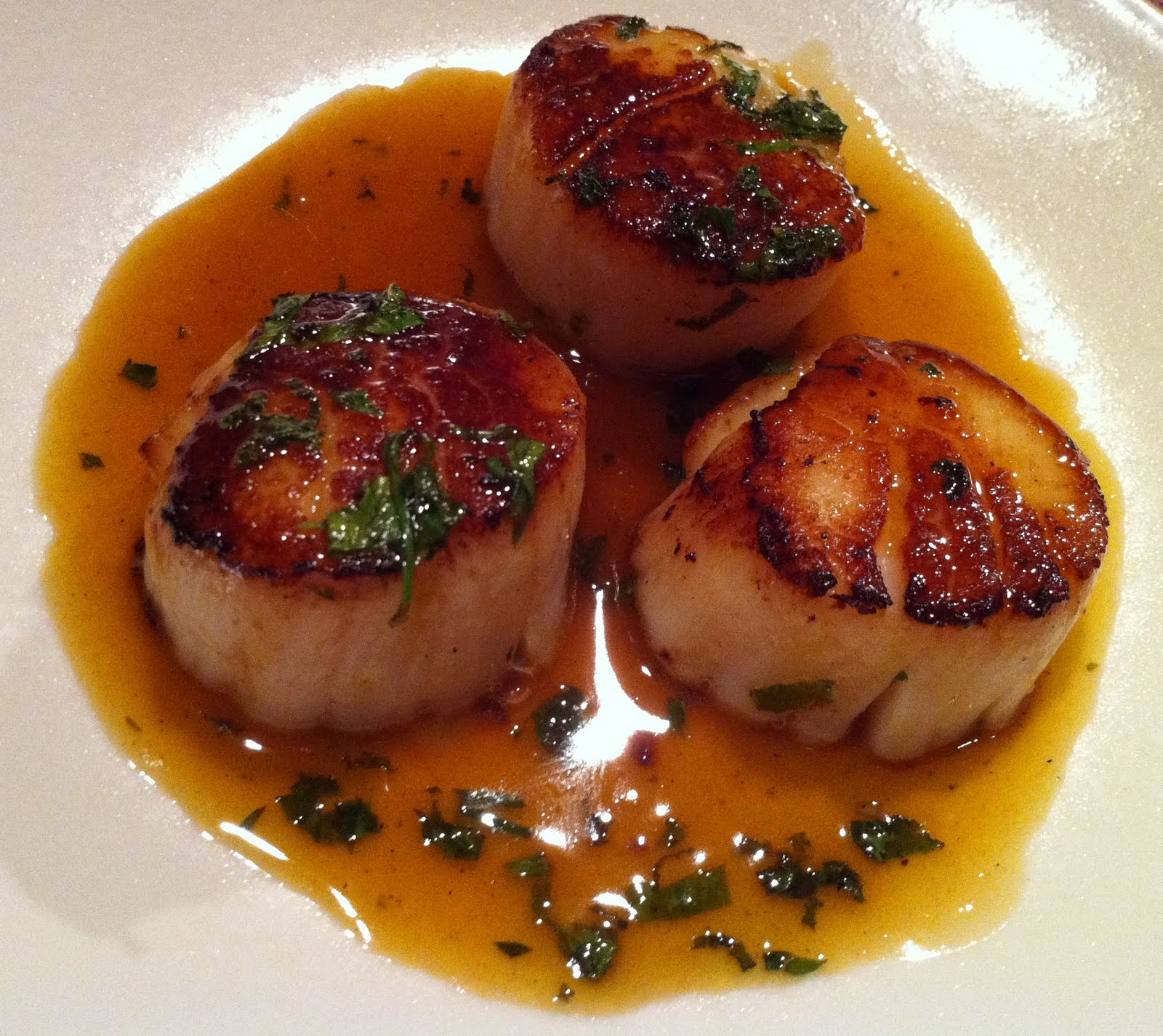 Seared Scallops with Citrus Herb Sauce | KeepRecipes: Your Universal ...