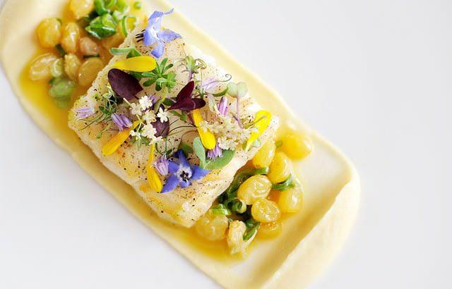 halibut glazed lardo amp parsnip puree keeprecipes your